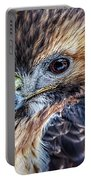 Portrait Of A Red-tailed Hawk Portable Battery Charger