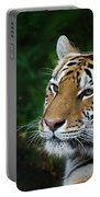 Portrait Of A Tiger Portable Battery Charger