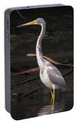 Portrait Of A Tri-colored Heron Portable Battery Charger