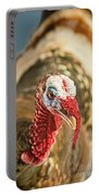 Portrait Of A Wild Turkey Portable Battery Charger