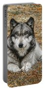 Portrait Of A Wolf Portable Battery Charger