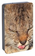 Portrait Of A Young Bob Cat 02 Portable Battery Charger