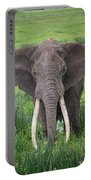 Portrait Of African Elephant Loxodonta Portable Battery Charger