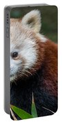 Portrait Of Cini The Red Panda Portable Battery Charger