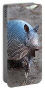 Posing Armadillo Portable Battery Charger