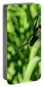 Posing Dragonfly 2 Portable Battery Charger
