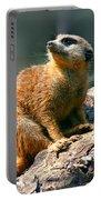 Posing Meerkat Portable Battery Charger