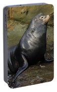 Posing Sea Lion Portable Battery Charger