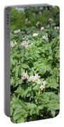 Potato Flower Agriculture Spring Scene Portable Battery Charger