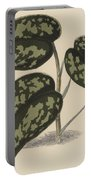 Pothos Argyraea Portable Battery Charger
