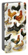 Poultry Portable Battery Charger
