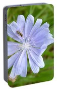 Powder Blue Chicory Portable Battery Charger