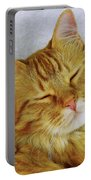 Pp Cat Portable Battery Charger