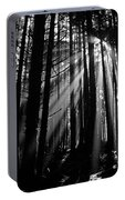 Prairie Creek Redwwod State Park  Portable Battery Charger