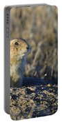 Prairie Dog Watchful Eye Portable Battery Charger