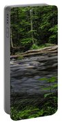 Prairie River Log Jam Portable Battery Charger