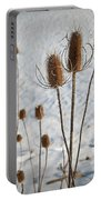 Prairie Seedheads Portable Battery Charger