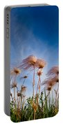 Prairie Smoke Portable Battery Charger