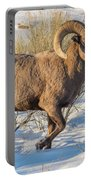 Prancing Ram In Snow Portable Battery Charger