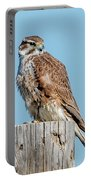 Prarie Falcon Portable Battery Charger by Norman Hall