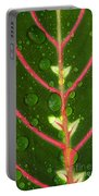 Prayer Plant Vertical Portable Battery Charger