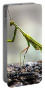 Praying Mantis  Portable Battery Charger
