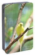 Precious Yellow Budgie Parakeeet In The Wild Portable Battery Charger