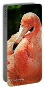 Preening Flamingo Portable Battery Charger