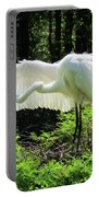 Preening The Wings Portable Battery Charger