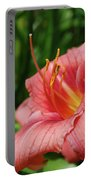 Pretty Flowering Pink Lily In A Garden Portable Battery Charger