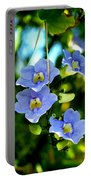 Pretty In Blue Portable Battery Charger
