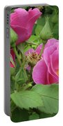 Pretty In Pink 3 Portable Battery Charger