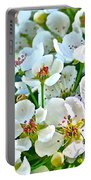 Pretty In White Portable Battery Charger