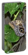 Pretty Morpho Butterfly Resting In A Butterfly Garden  Portable Battery Charger