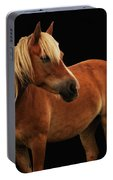 Pretty Palomino Pony Portable Battery Charger