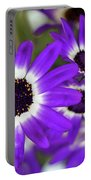 Pretty Purple Daisies Portable Battery Charger