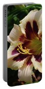 Pretty Single Blooming Daylily In A Garden Portable Battery Charger