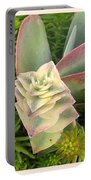 Pretty Succulents Portable Battery Charger