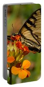 Pretty Swallowtail Portable Battery Charger
