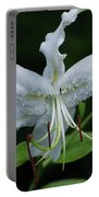 Pretty White Stargazer Lily Flower Blossom Portable Battery Charger