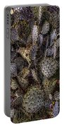 Prickly Pear Cactus At Tonto National Monument Portable Battery Charger