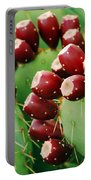 Prickly Pear Fruit Portable Battery Charger