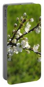 Pride Of The Hedgerow Portable Battery Charger