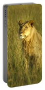 Princely Lion Portable Battery Charger
