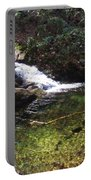 Pristine Stream Pool Portable Battery Charger