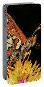 Profile Of A Butterfly Portable Battery Charger