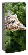 Profile Of A Giraffe Portable Battery Charger