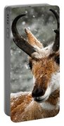 Pronghorn Buck In Snow - Yellowstone National Park Portable Battery Charger