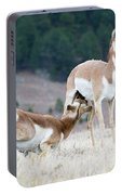 Pronghorn Feeding Portable Battery Charger