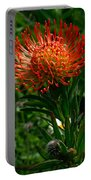 Protea Burst Portable Battery Charger